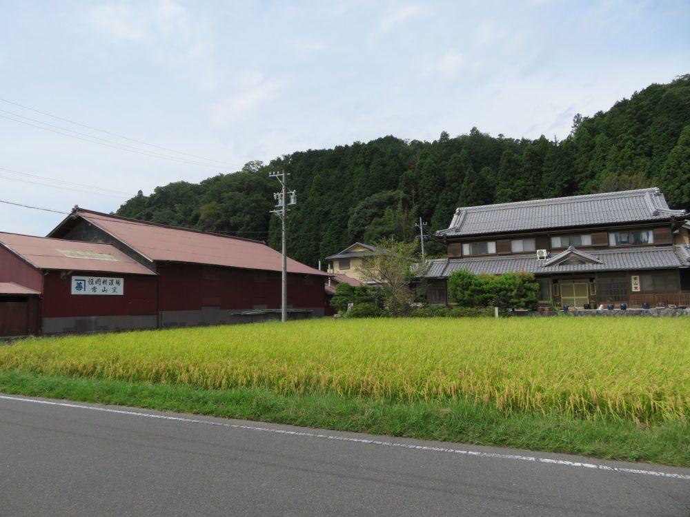 伊賀焼 芭蕉山 常山窯